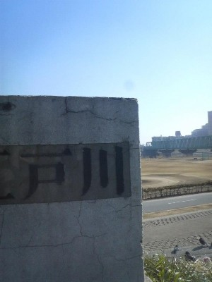 12:23 スタートから54.1km 江戸川超え。市川大橋を渡り千葉入り