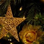 キーワードプランナーを使って『クリスマス』を調べてみた
