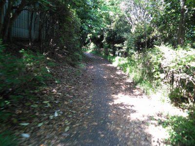 浦安から、このような道になります