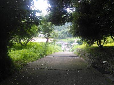 足柄神社からの下り坂